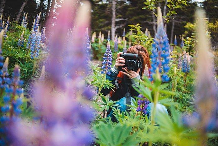 How to take sharp photos - get closer
