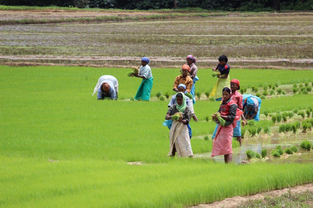 Pradeep Chamaria Photo 5