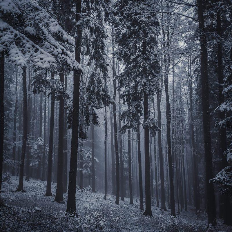 Example of upslope fog