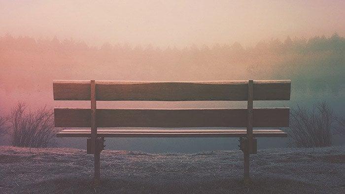 Patience - macro photography