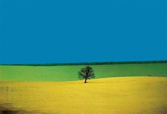 Landscape Photographers 1