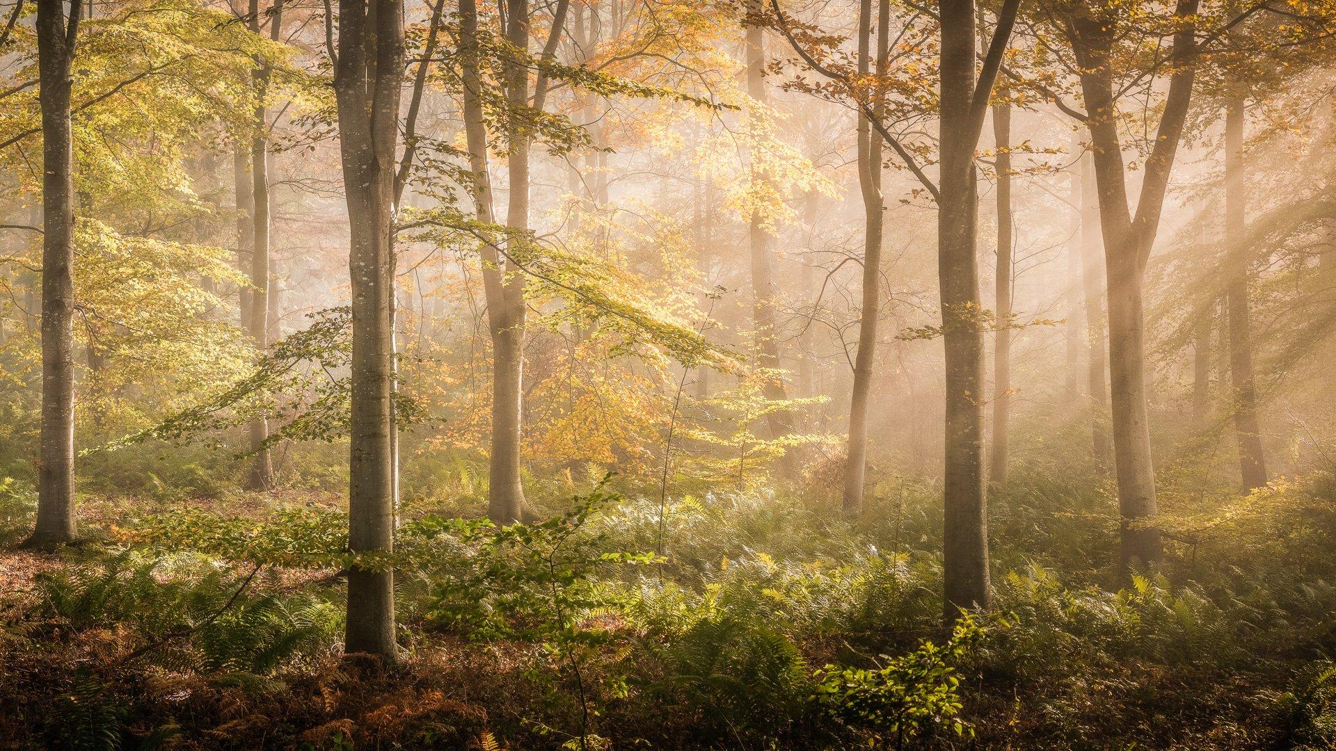 Landscape Photographers 7