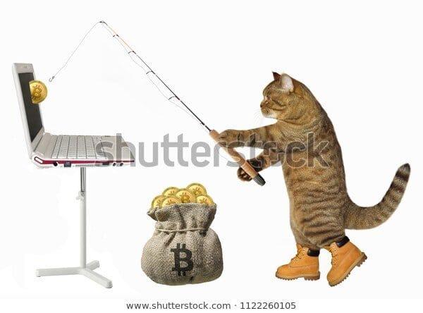 Shutterstock Weird Stock Photo #6