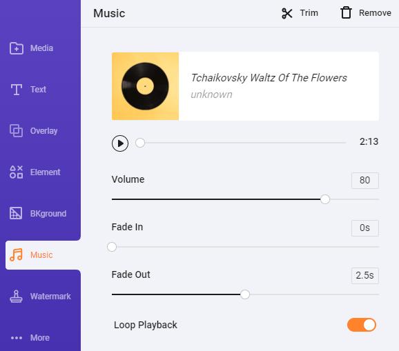 FlexClip Music Settings