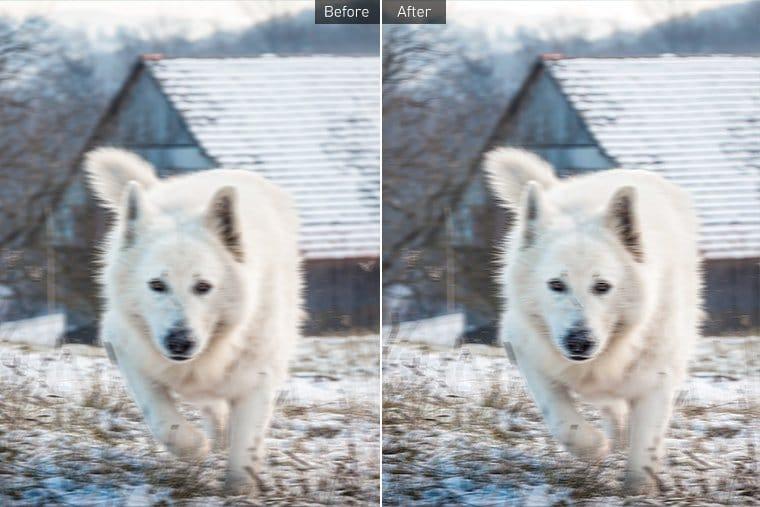 "Vance AI: <span class=""title-bold"">AI Image Enhancer Software</span> Review 1"