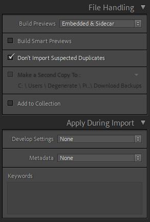 Lightroom File Handling Panel on Import
