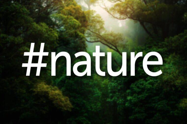 Nature photography hashtags thumbnail